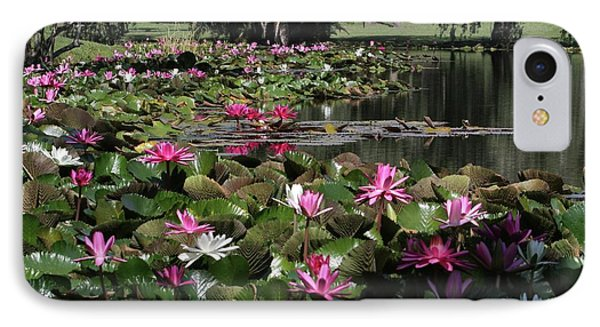 Water Lilies In The St. Lucie River Phone Case by Sabrina L Ryan