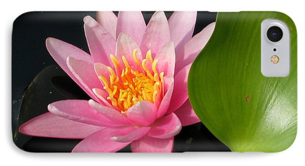 Water Lily 2 Phone Case by Eva Kaufman