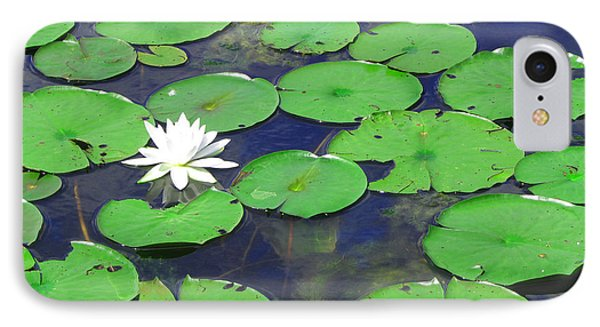 IPhone Case featuring the photograph Water Lily by Clara Sue Beym
