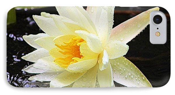 Water Lily In White IPhone Case by Elizabeth Budd