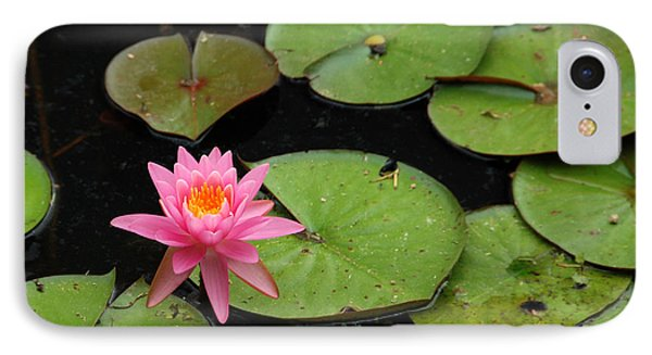 Water Lily IPhone Case by Kay Lovingood