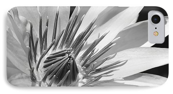 Water Lily Macro In Black And White Phone Case by Sabrina L Ryan