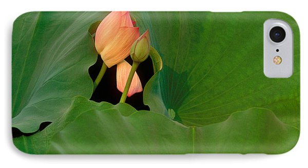 Water Lily IPhone Case by Mark Greenberg