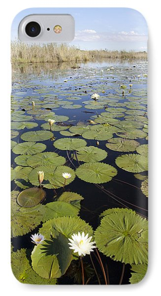 Water Lily Nymphaea Sp Flowering Phone Case by Matthias Breiter