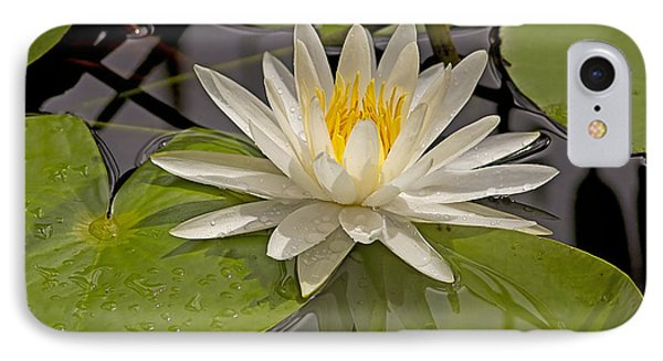 IPhone Case featuring the photograph Waterlily  by Anne Rodkin
