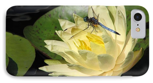 Waterlily With Dragonfly Phone Case by Eva Kaufman