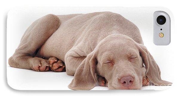 Weimaraner Puppy IPhone Case