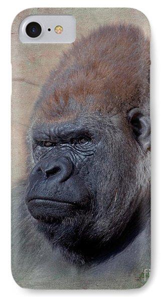 Western Lowland Gorilla IPhone Case by Betty LaRue
