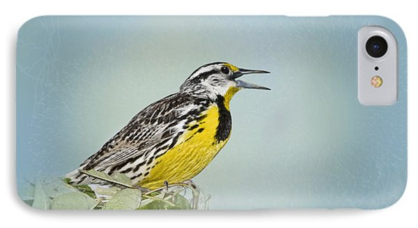 Meadowlark iPhone 7 Case - Western Meadowlark by Betty LaRue
