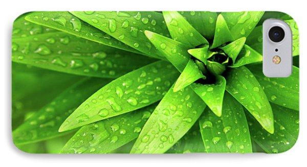 Wet Foliage Phone Case by Carlos Caetano