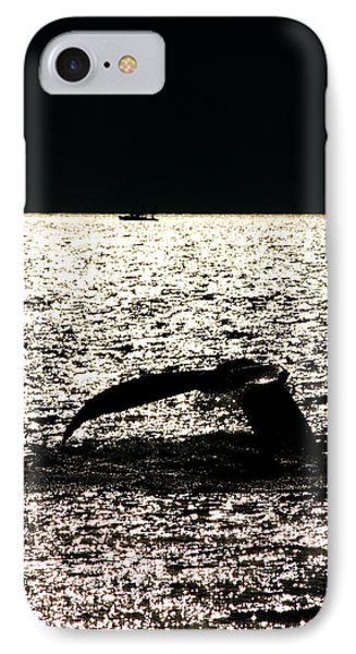 Whale In Sunset Phone Case by Paul Ge
