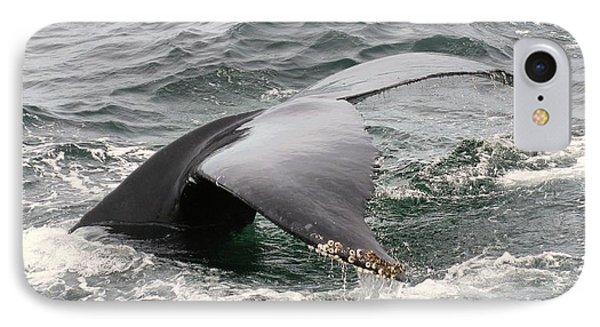 Whale Tale Phone Case by Tammy Bullard