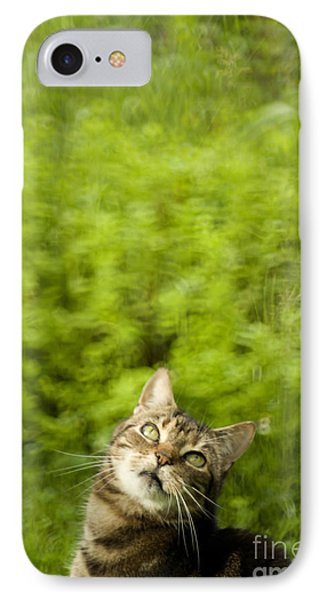 What Is Up There Phone Case by Angel  Tarantella