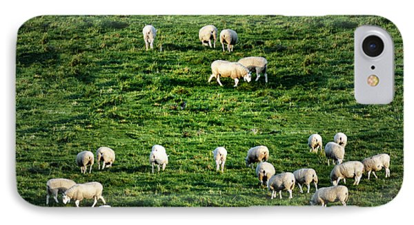 What The Flock IPhone Case by Bill Cannon