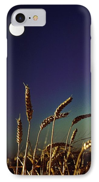 Wheat Field At Night Under The Moon Phone Case by The Irish Image Collection