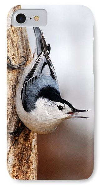 White-breasted Nuthatch 3 Phone Case by Larry Ricker