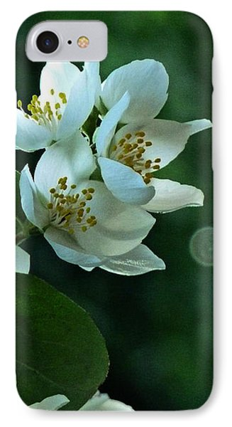 IPhone Case featuring the photograph White Buds And Blossoms by Steve Taylor
