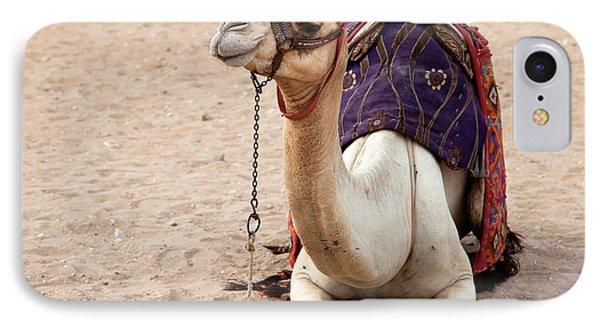 White Camel Phone Case by Jane Rix