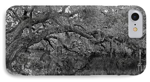 IPhone Case featuring the photograph White City Oak Pano by Larry Nieland