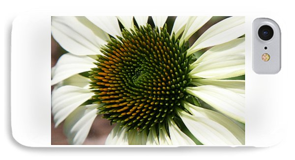 IPhone Case featuring the photograph White Coneflower Daisy by Donna Corless