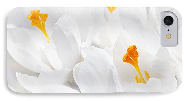 White Crocus Blossoms IPhone Case by Elena Elisseeva