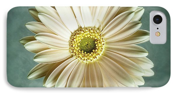 White Daisy IPhone Case by Tamyra Ayles
