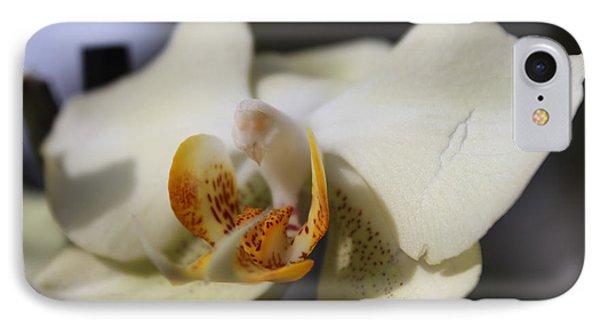 White Dove Orchid IPhone Case by Deborah Hughes