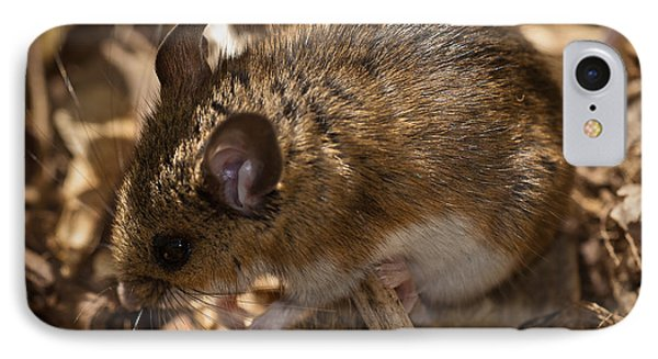 White-footed Mouse IPhone Case by  Onyonet Photo Studios