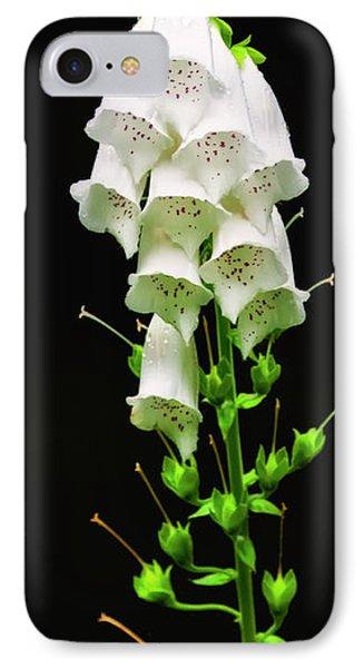 White Foxglove IPhone Case by Albert Seger