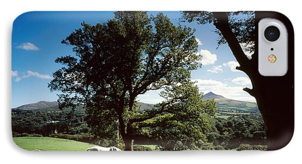 White Horse At Powerscourt, Co Wicklow Phone Case by The Irish Image Collection