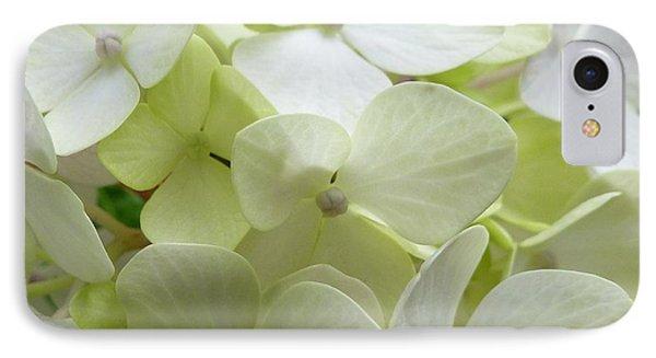 White Hydrangea IPhone Case by Barbara Moignard