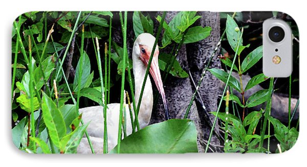 IPhone Case featuring the photograph White Ibis At The Everglades by Pravine Chester