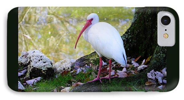 White Ibis IPhone Case by Judy Wanamaker