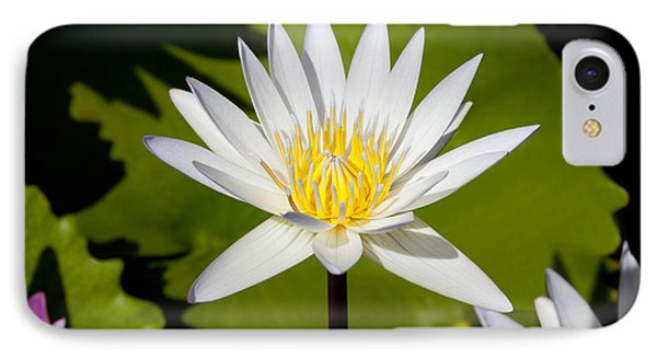 White Lotus Phone Case by Kelley King