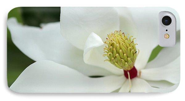 White Magnolia Phone Case by Sabrina L Ryan