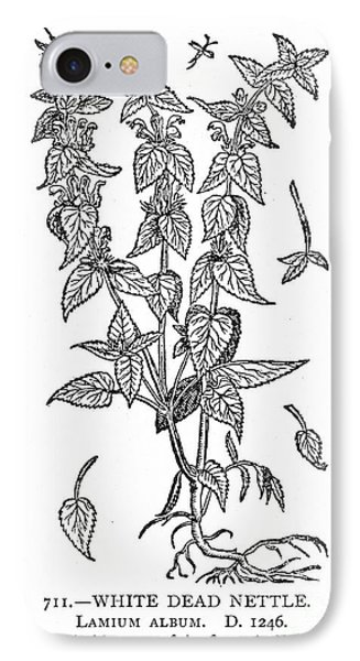 White Nettle Phone Case by Granger