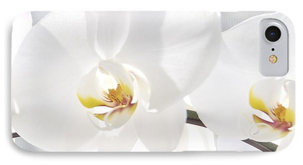 IPhone Case featuring the photograph White Orchid by Cindy Lee Longhini