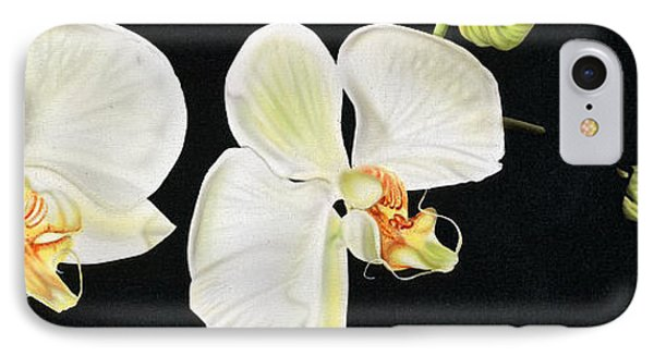 White Orchids IPhone Case by Dan Menta