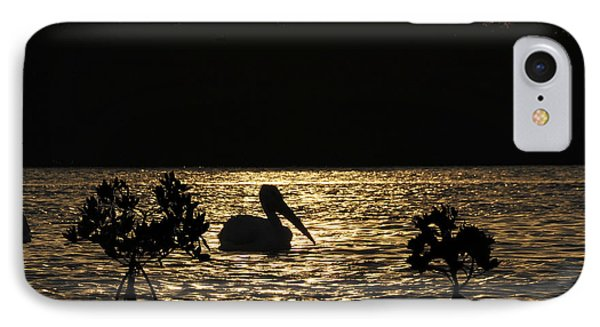IPhone Case featuring the photograph White Pelican Evening by Dan Friend