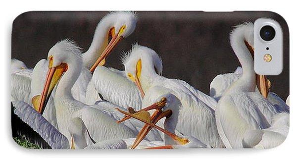 White Pelican Gossip IPhone Case by Robert Frederick