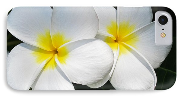 White Plumerias Phone Case by Shane Kelly