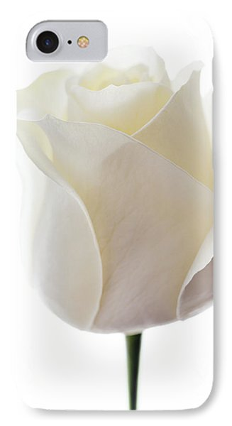 White Rose (rosa Sp.) Phone Case by Gavin Kingcome