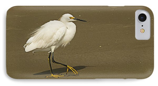 White Seabird Walking IPhone Case by Barbara Middleton