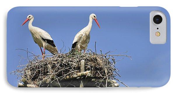 White Storks In Their Nest IPhone Case by Matthias Hauser