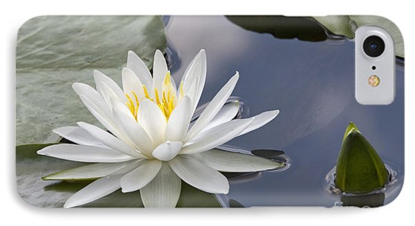 White Water Lily Phone Case by Vladimir Sidoropolev