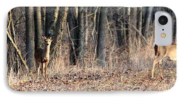 Whitetail Alert IPhone Case by Mark J Seefeldt