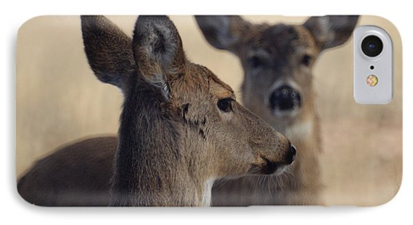 Whitetail Deer Phone Case by Ernie Echols
