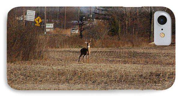 Whitetail Deer IPhone Case by Randy J Heath
