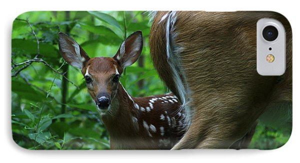 Whitetail Fawn IPhone Case