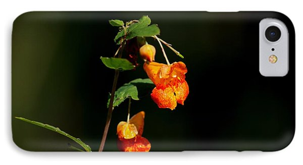 IPhone Case featuring the photograph Wild Beauty by Ramabhadran Thirupattur